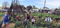 Bayer Farm 2.28.16 for UCCE Sonoma Blog
