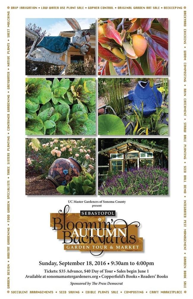 Bloomin Backyards 2016