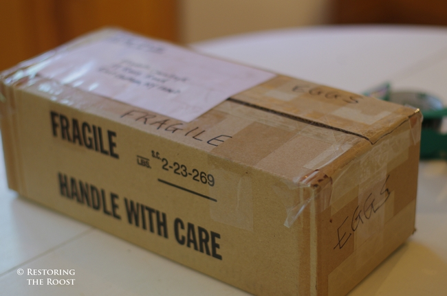 Securly tape the box and affix the shipping label.