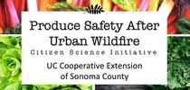 CropSafetyWebsite Banner for UCCE Sonoma Blog