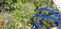 The 2017 Sonoma County Fair MG demo garden for UCCE Sonoma Blog