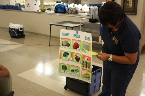 Nutrition educator Nora Lopez teaches participants the importance of including a variety of fruits and vegetables.