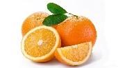 orange blog1