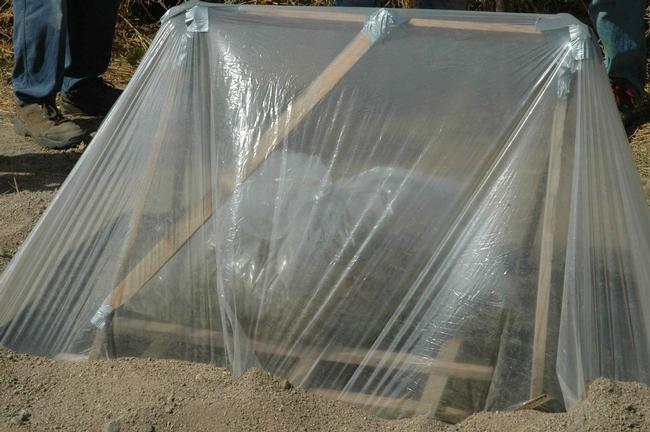 Tent solarization