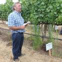 Weed science advisor John Roncoroni explains that Roundup doesn't do much for horseweed during a presentation about the use of herbicides in vineyards.