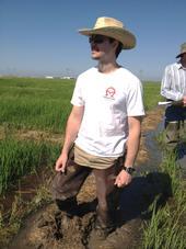 UC Davis graduate student--Rafael Pedroso--in a rice field