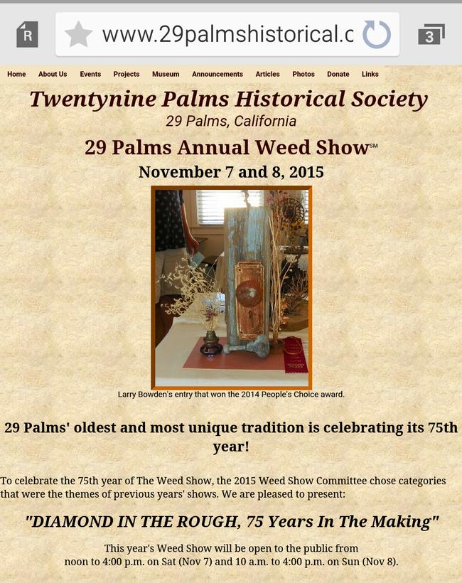 29 Palms brochure