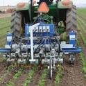 Photo 1. Robovator intelligent cultivators