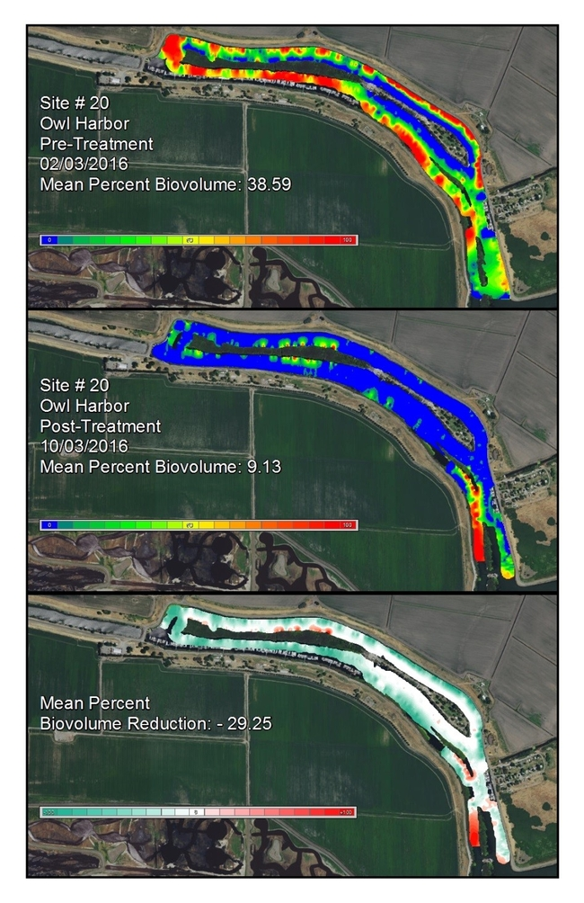 Figure 3. Pre and post-treatment biovolume maps and change detection for Owl Harbor (Site 20). The biovolume color scale ranges from 0% (blue) to 100% (red) at 5% increments. The change detection color scale ranges from 100% reduction (teal) to no change (white) to 100% increase (red) at 10% increments.