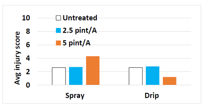 Figure 3. Injury scores (scale: 1=none to 10=dead) after drip or spray application of Pronamide (Kerb) at Santa Paula, CA.