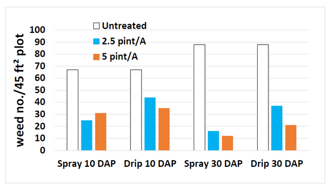 Figure 2. Pronamide (Kerb) effect on weed densities when applied as spray or via drip tape at Santa Paula, CA. No significant differences were observed between rates or application methods (P=0.38 and P=0.22) but both significantly reduced weed number (P=0.001)