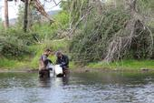 John Miskella (left) and Rui Adachi sampling for curlyleaf pondweed in Putah Creek. Photo: Sara Ohadi.