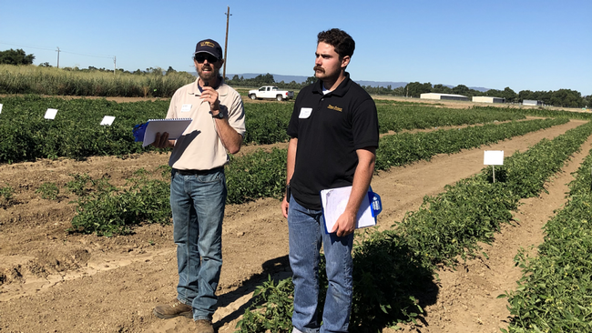 Brad Hanson and Matt Fatino, UC Davis Plant Sciences, address the concerns about branched broomrape (parasitic weed) potentially getting into tomato fields, and how it might be controlled. At Weed Day, 2019. (photo Ann Filmer/UC Davis)