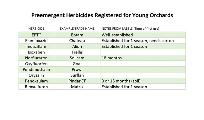 Preemergent herbicides registered for young orchards