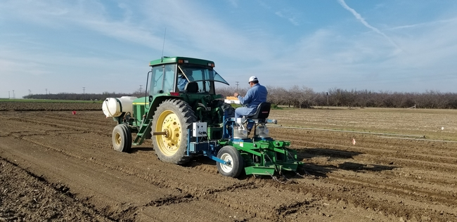 Planting garbanzos for a research trial at UC West Side REC in the San Joaquin Valley, 2020.