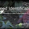 Training video--Weed identification