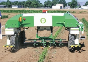 Vegetable weeder is demonstrated at Weed Day at UC Davis. (photo credit: Bob Johnson)