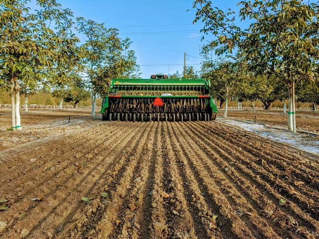Photo 1. The 13' seed drill used to plant cover crops in orchard alleys in mid-November 2019.