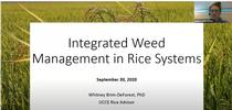 Integrated Weed Management in Rice Systems presentation by Whitney Brim-DeForest for UC Weed Science Blog