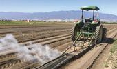 After testing steam treatments in three Salinas Valley trials this year, UC Cooperative Extension specialists say they believe the technique can significantly reduce weed pressure in lettuce and spinach fields, and can cut hand-weeding time. Photo/Courtesy Steve Fennimore, UCCE/UCD