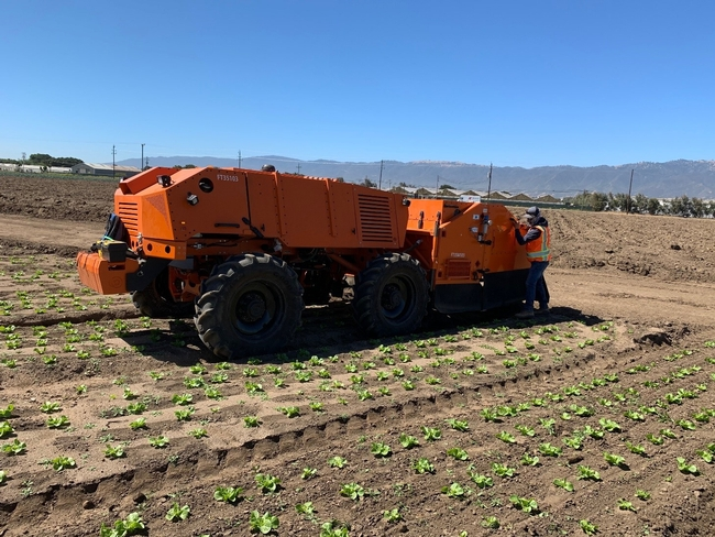 Photo 1. FarmWise Titan autonomous tractor equipped with split knives; it currently does not operate fully autonomously due to Cal OSHA regulations.