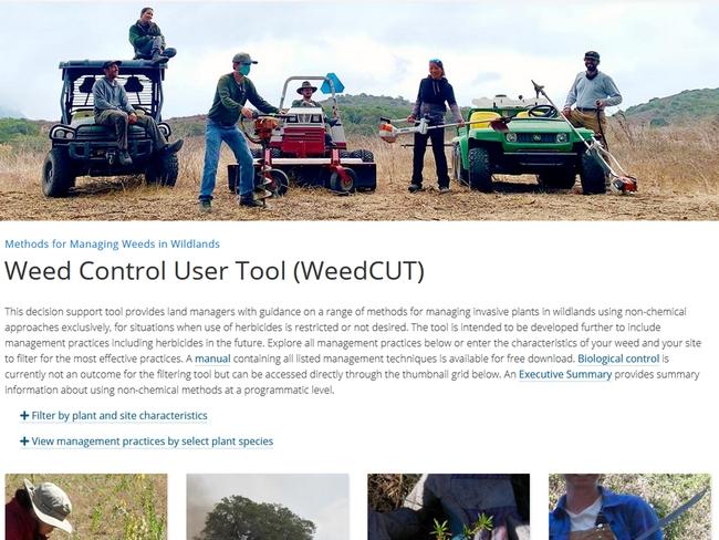 WEED CUT