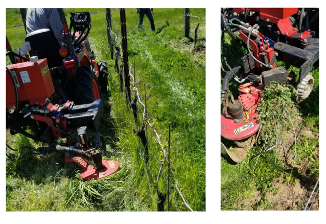 Figure 3. Excessive plant biomass blocking movement of the rotary tiller (left) and the sensor bar (right).