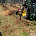 Figure 1. On farm study evaluating under-vine cultivator in Turner, OR in the spring of 2021.