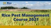 Rice Pest Management Course 2021