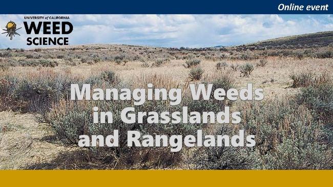 Managing Weeds in Grasslands and Rangelands banner