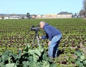 Researcher looking through video camera while in a field.