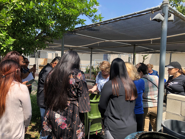 Training participants observe gardening demonstration from UCCE educator.