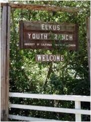 Elkus Youth Ranch - Welcome!