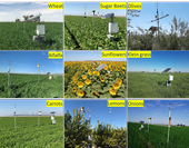 Automated surface renewal and eddy covariance equipment to measure actual crop water use in several commercial fields in the low desert of California.