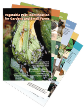 Vegetable Pest Identification cards