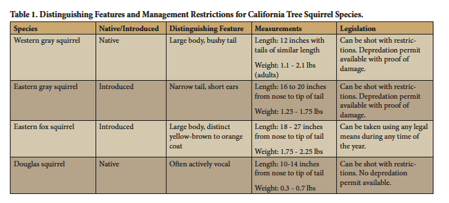 Table 1. Distinguishing features and management restrictions for California tree squirrel species.