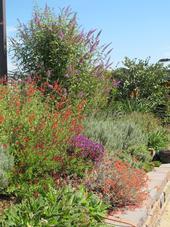 Gardens can be beautiful using IPM. [E. Zagory]