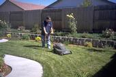 Mowing lawn using electric mulching mower. (C.A. Reynolds)