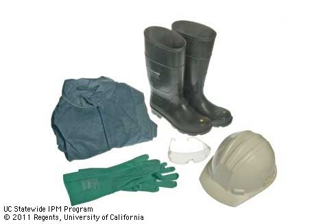 Personal protection equipment. (Mike Poe) for Pests in the Urban Landscape Blog