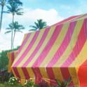 Fumigation Tent.