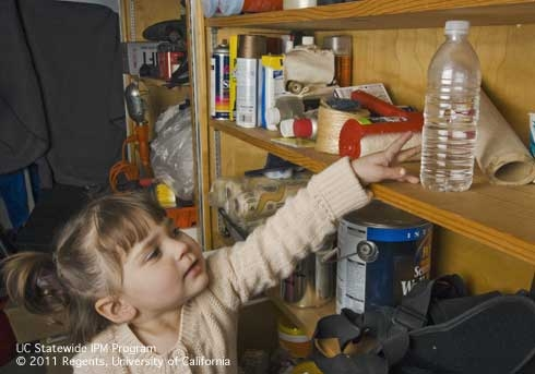 A child reaching for a pesticide stored in a common drinking container. (Credit: ML Poe) for Pests in the Urban Landscape Blog