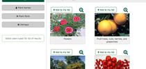 Plant problem diagnostic tool menu. for Pests in the Urban Landscape Blog