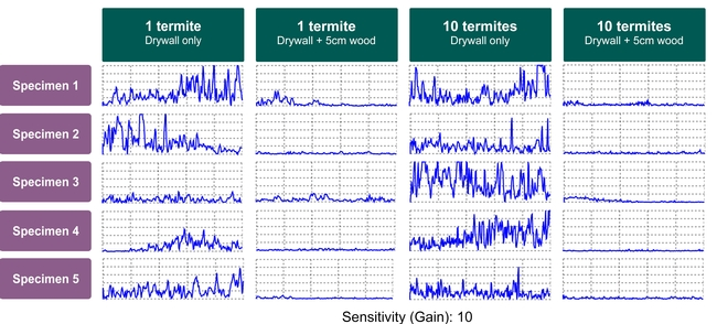 Figure 3: Termatrac's signal output for different termite densities and different depths. Higher termite densities do not always create a noticeably stronger signal.