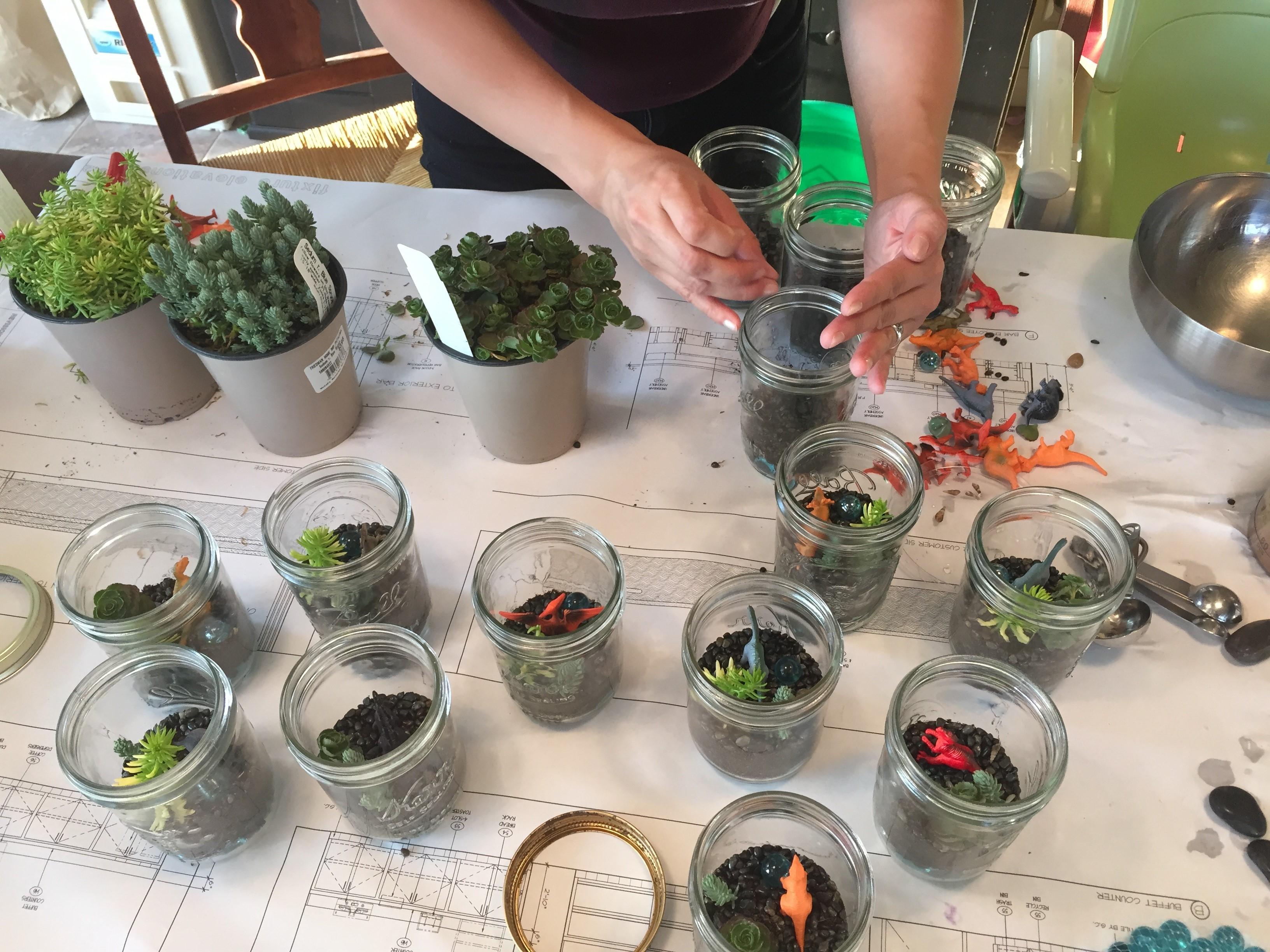 Kids In The Garden Series Glass Jar Succulent Terrariums Under The Solano Sun Anr Blogs