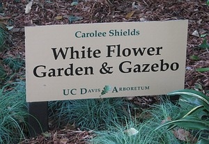 UC Davis Arboretum White Flower Garden sign. (photo by Marime Burton)
