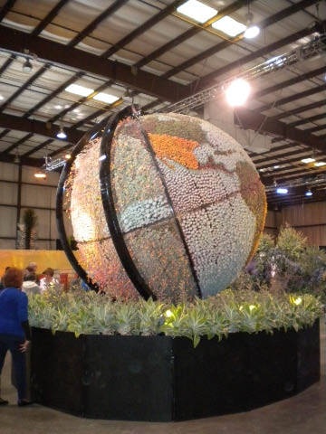 Succulent globe. Photos by Karen Metz