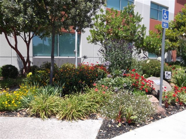 The Children's Memorial Garden (photo by Sharon Rico)