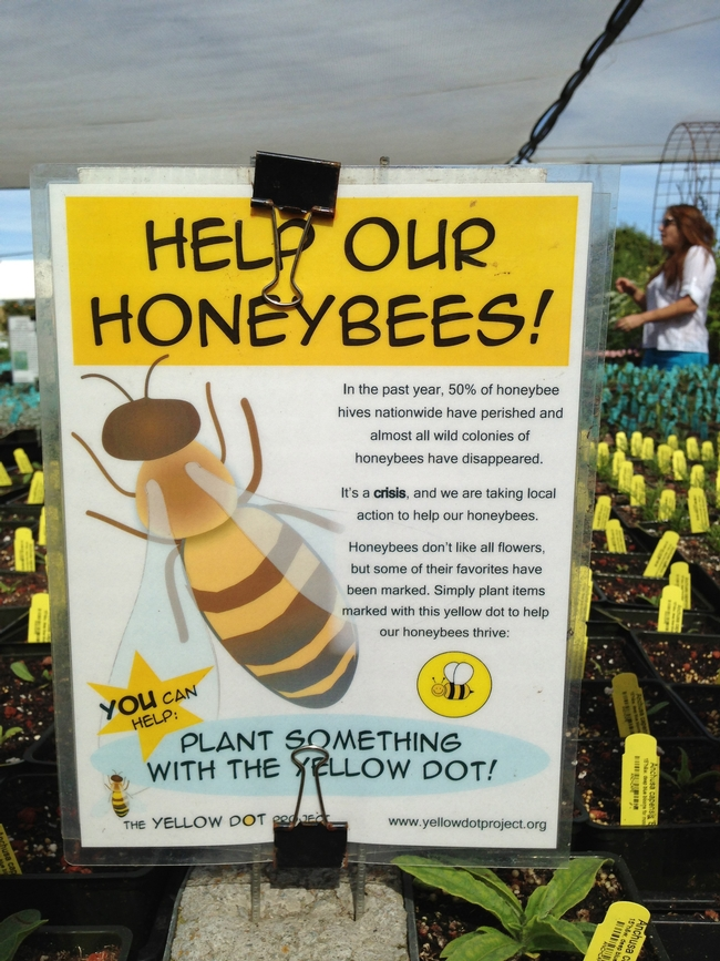 Help Our Honeybees. (photo by Marian Chmieleski)