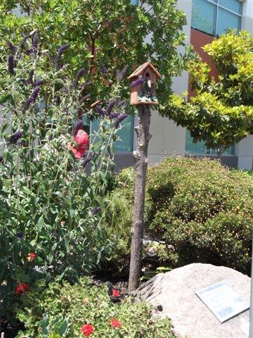 Bird house on a branch (pole).