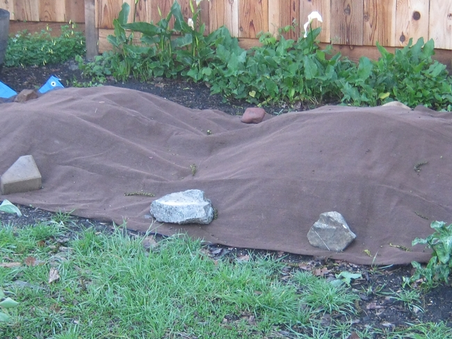 Covered compost pile. (photos by Susan Croissant)